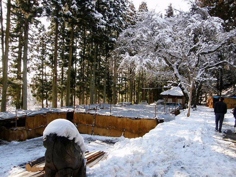 奥州・黒石寺「蘇民祭」2009 2009/02/01